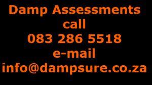 damp-assessment-inspection