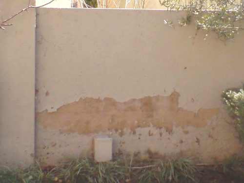 Rising-damp-boundary-wall
